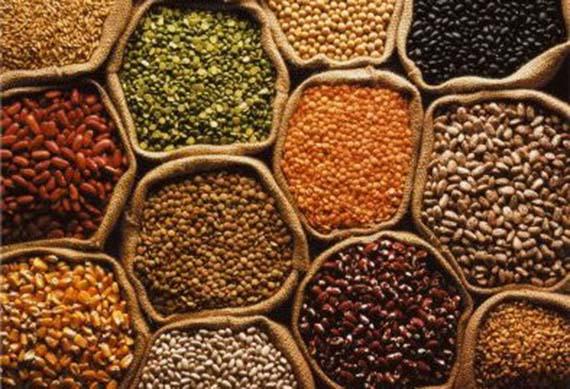 El mundo de los cultivos se moderniza