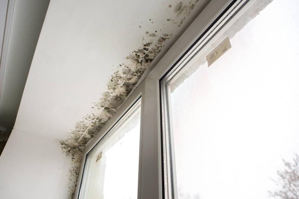 Luchar contra la humedad en casa es posible