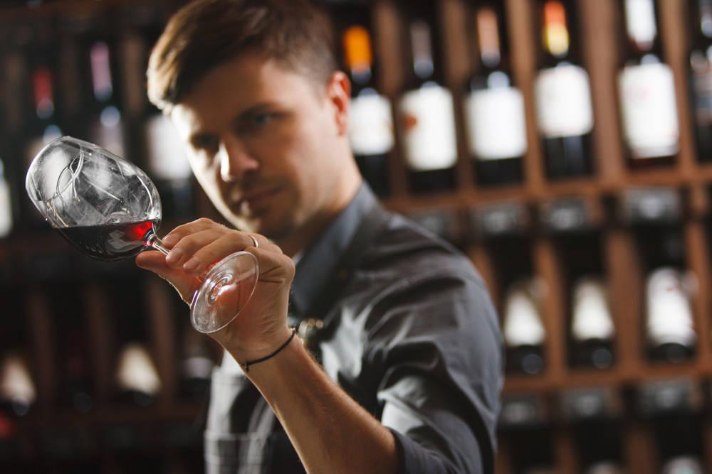 Montar una bodega de vino, ¿cuánto cuesta?