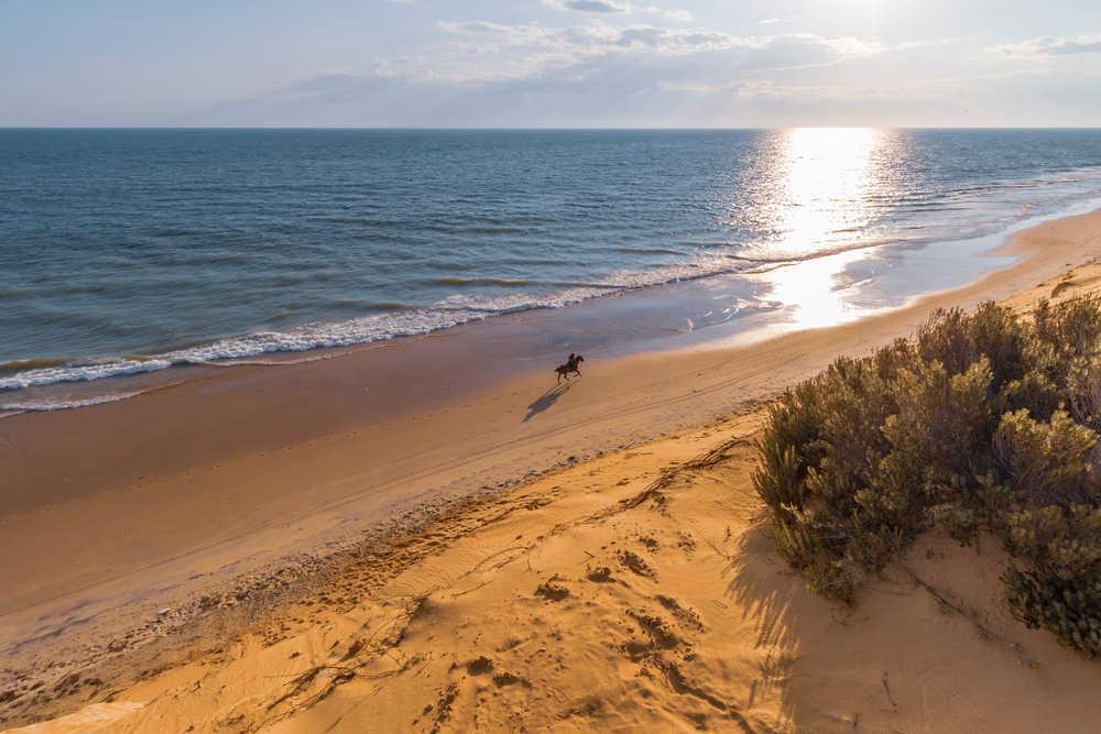 Matalascañas: uno de los destinos preferidos para este verano